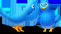 Segui il canale Twitter di Lefelicitapossibili.com