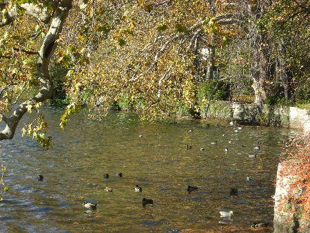 Lago Natura